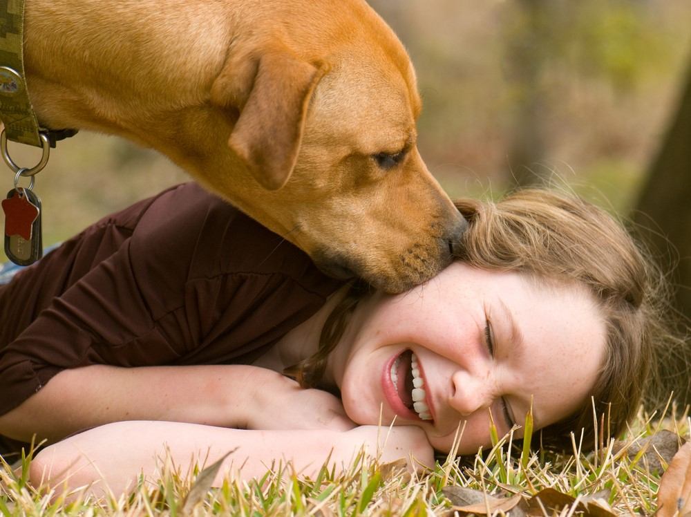 Childhood Bullying Can Have Lasting >> How Pets Help Kids Combat the Effects of Bullying and ...